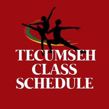 tecumseh-button